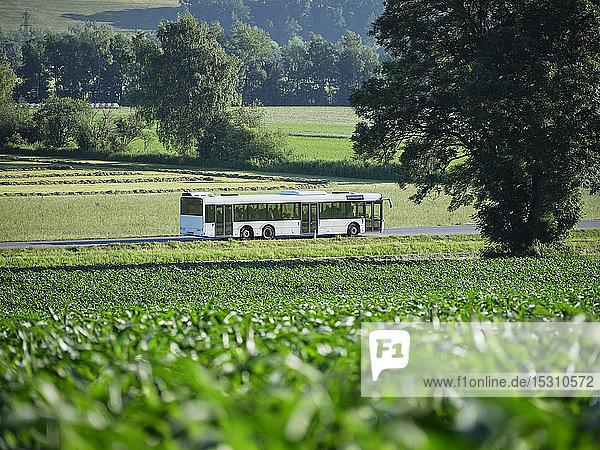 Bus fährt auf der Autobahn auf der grünen Wiese