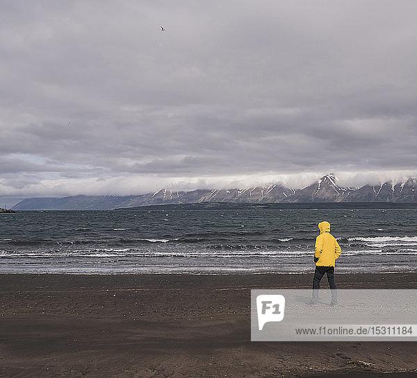 Matuer Mann steht am Lavastrand am Eyjafjordurfjord  Island  und schaut auf das Meer