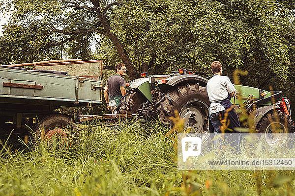 Zwei Personen mit Traktor bei der Kirschenernte im Obstgarten