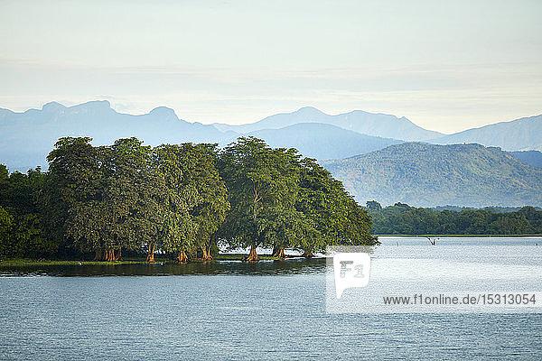 View to penisula at Udawalawe Reservoir  Udawalawa National Park  Sri Lanka