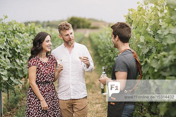 Sommelier erklärt Kunden Wein im Weinberg