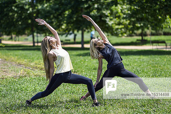 Mature woman doing yoga with her daughter in a park