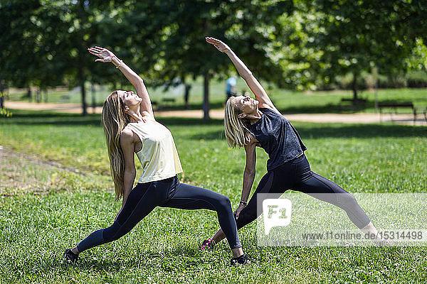 Reife Frau macht Yoga mit ihrer Tochter in einem Park