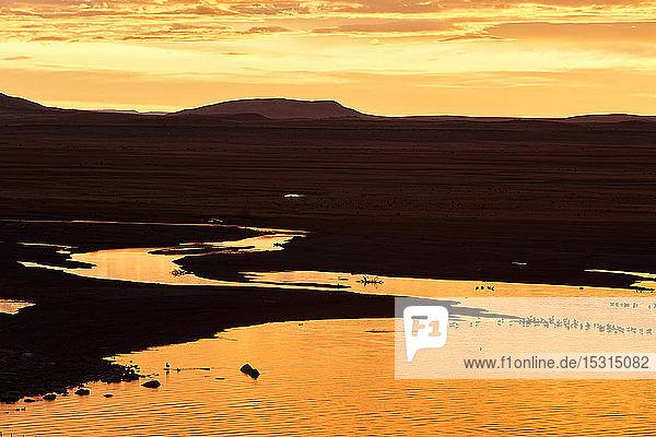 Silhouette der Magellan-Halbinsel bei Sonnenuntergang  Los Glaciares-Nationalpark  Patagonien  Argentinien