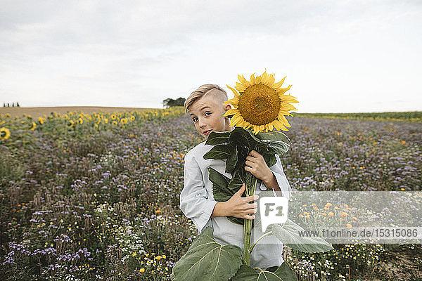 Bildnis eines Jungen  der eine Sonnenblume auf einem Feld hält