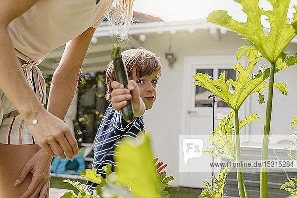 Portrait of boy with mother in garden showing a courgette