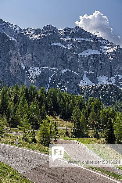 Passstrasse  Grödnerjoch  Sellagruppe  Dolomiten  Südtirol  Italien