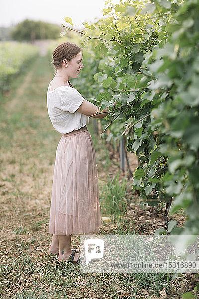 Junge Frau in den Weinbergen