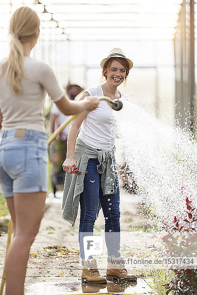 Two happy young women having fun while watering flowers with hose in the greenhouse