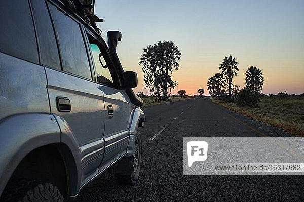 Off-road vehicle driving on a road at sunrise  Makgadikgadi Pans  Botswana