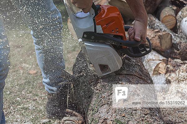 Mann  der mit einer Motorsäge einen Baumstamm zusammenfügt