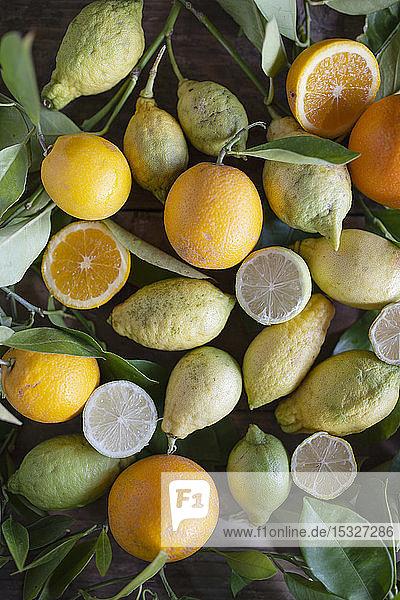 Verschiedene Bio-Zitrusfrüchte mit Blättern auf rustikalem Tisch