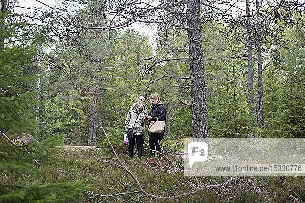 Women picking mushrooms in forest