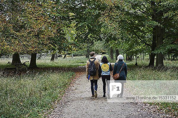 Friends walking on path in park