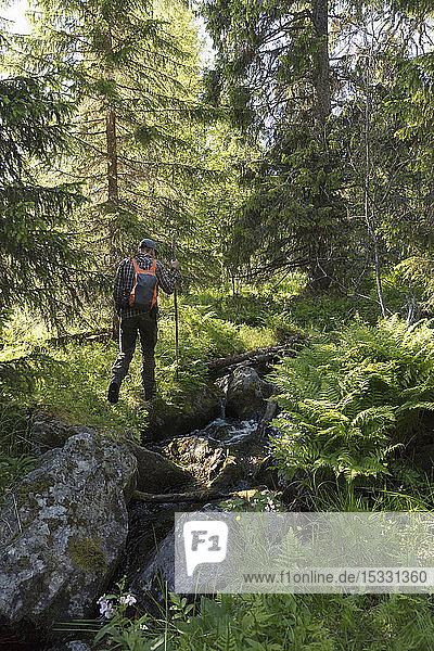 Man hiking in Tofsingdalen Nature Reserve in Sweden