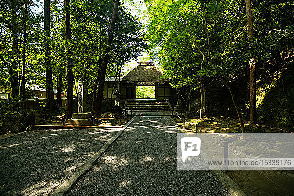 Honen-in temple entrance