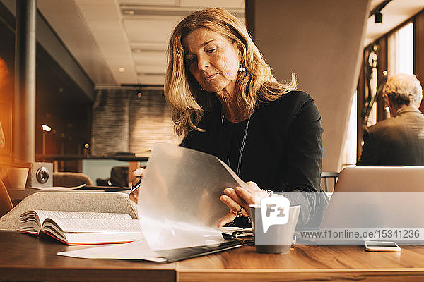 Female lawyer reading documents and using laptop while sitting at cafeteria in law office