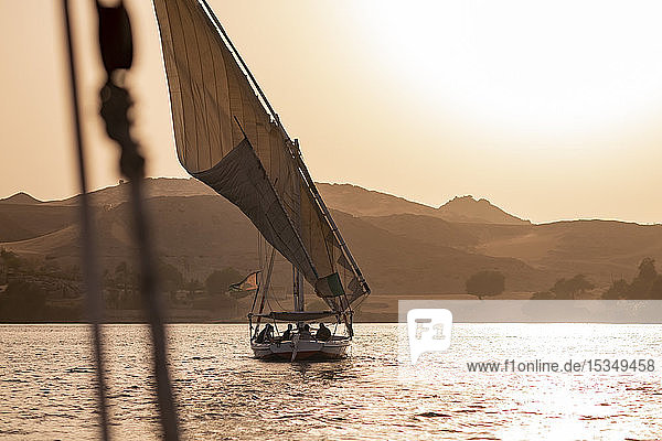 A traditional Felucca sailboat with wooden masts and cotton sails at sunset on the River Nile  Aswan  Egypt  North Africa  Africa