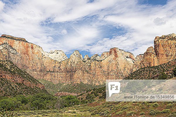 Canyon overlook in Zion National Park  Utah  United States of America  North America