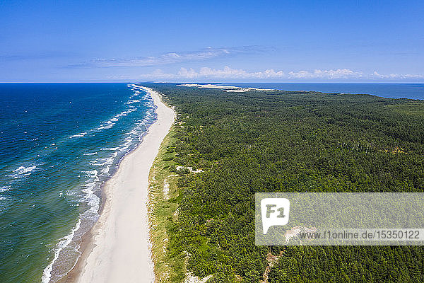 Aerial by drone of the Curonian Spit National Park  UNESCO World Heritage Site  Kaliningrad  Russia  Europe