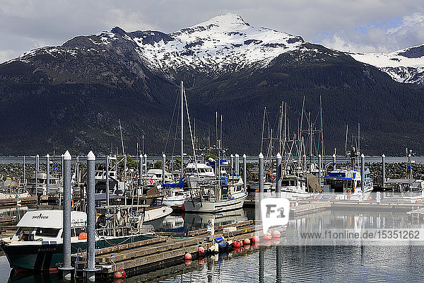 Small Boat Harbor  Haines  Lynn Canal  Alaska  United States of America  North America