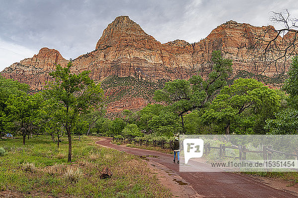 Enjoying the view in Zion National Park  Utah  United States of America  North America