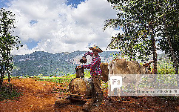 Farmer with work clothes drawing water from old well in Vinales National Park  UNESCO World Heritage Site  Pinar del Rio Province  Cuba  West Indies  Central America