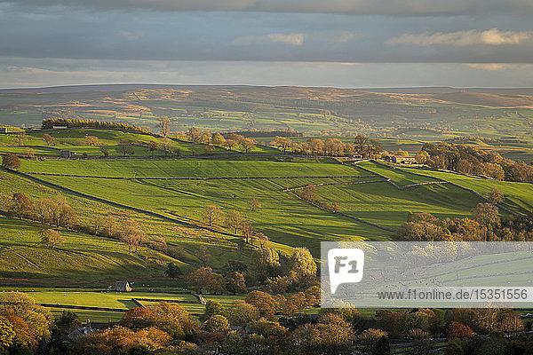 Rolling countryside near Malham in autumn  Yorkshire Dales National Park  Yorkshire  England  United Kingdom  Europe