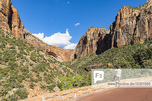 Taking a photo of Canyon overlook  Zion National Park  Utah  United States of America  North America