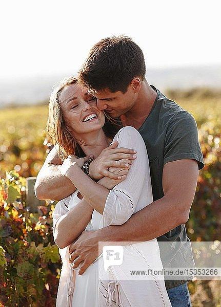 Romantisches Paar im Weinberg  Kapstadt  Südafrika