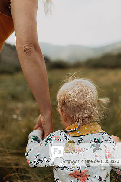 Mother holding toddler daughter's hand in rural valley  cropped rear view  Mineral King  California  USA