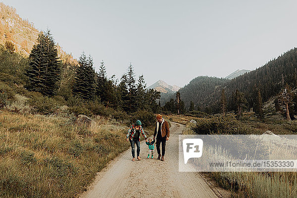 Mid adult couple walking with toddler daughter on rural valley road  Mineral King  California  USA