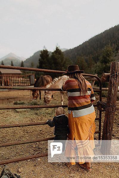Mittlere erwachsene Mutter mit Kleinkind-Tochter beim Betrachten von Pferden im Paddock  Rückansicht  Mineral King  Kalifornien  USA