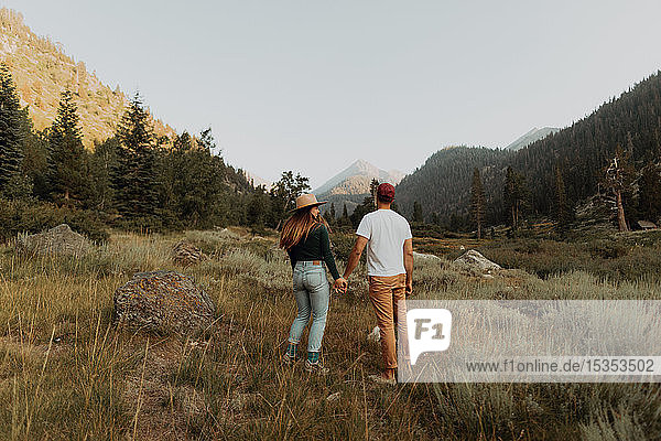 Young couple holding hands in rural valley  rear view  Mineral King  California  USA