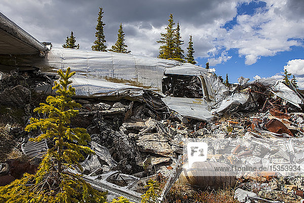 The land reclaiming a 1943 B-24 Liberator crash in the Yukon-Charley Rivers National Preserve  Wild and Scenic River  Charley River; Alaska  United States of America