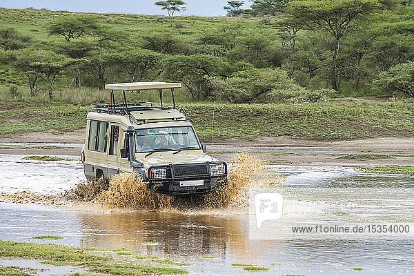 Safari vehicle splashes through flooded gully in the Ndutu area of the Ngorongoro Conservation Area on the Serengeti Plains; Tanzania