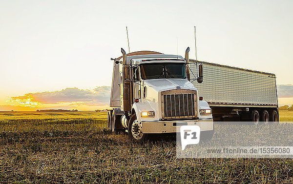 Transport truck in a canola field at sunset during harvest; Legal  Alberta  Canada
