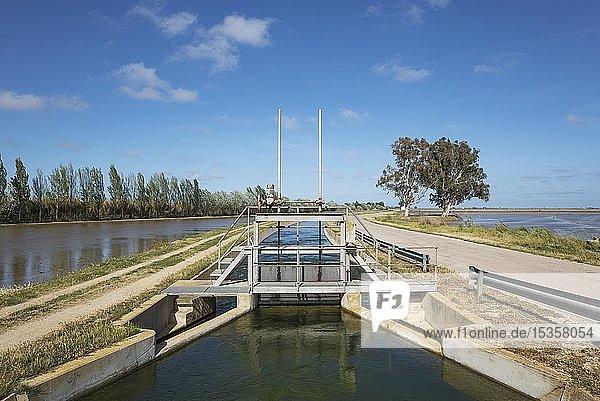 Kanal mit Schleuse inmitten von überfluteten Reisfeldern  Naturschutzgebiet Ebro-Delta  Provinz Tarragona  Katalonien  Spanien  Europa