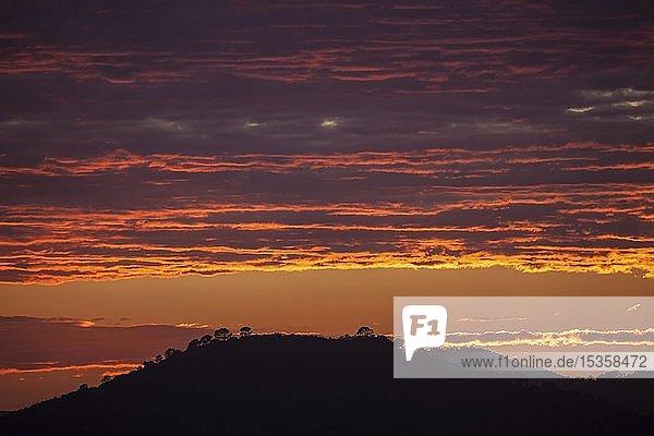 Sonnenuntergang  Abendhimmel mit roten Wolken  bei Paguera oder Peguera  Mallorca  Balearen  Spanien  Europa