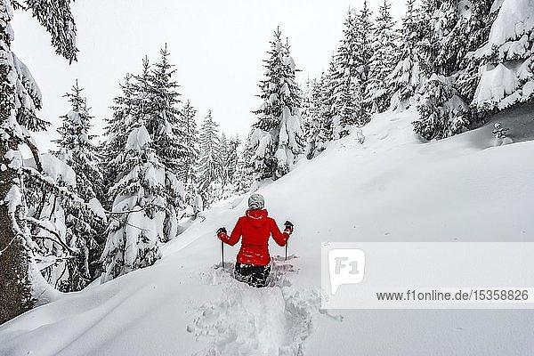 Junge Frau steht im tiefem Schnee  Wandern im Winter  Tiefschnee im Wald  Brixen im Thale  Tirol  Österreich  Europa