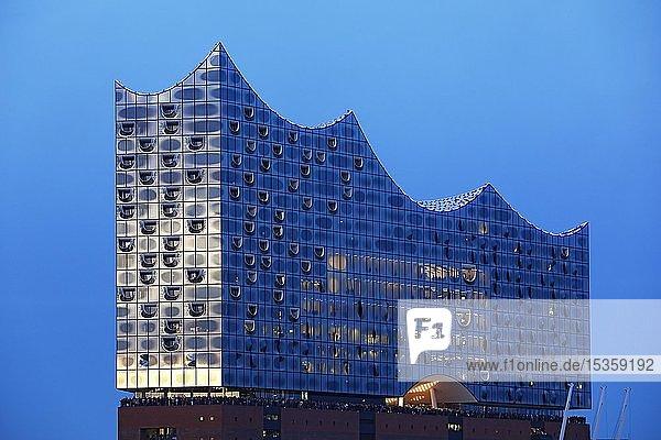 Elbphilharmonie zur blauen Stunde  HafenCity  Hamburg  Deutschland  Europa