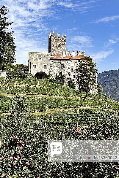 Burg Hochnaturns oberhalb von Naturns  Höhenburg aus dem 13. Jahrhundert  romanischer Wohnturm  Vinschgau  Südtirol  Italien  Europa