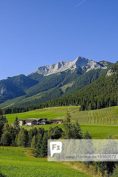 Steinberg am Rofan  hinten Guffert  Tirol  Österreich  Europa