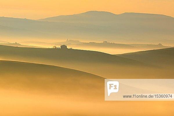 Morgenstimmung in der Toskana  Hügellandschaft mit Nebel glühen in ersten Licht bei Sonnenaufgang  Val d'Orcia  Toskana  Italien  Europa