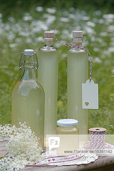Flaschen mit Holunderblüten Sirup  Oberbayern  Bayern  Deutschland  Europa