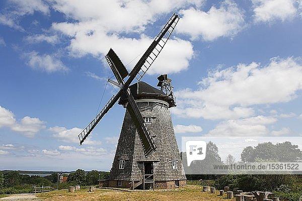 Holländerwindmühle in Benz  Insel Usedom  Mecklenburg-Vorpommern  Deutschland  Europa