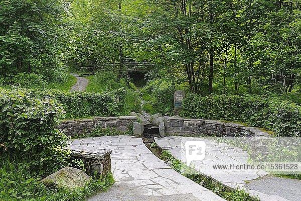 Bordered Ruhr spring near Elkeringhausen  Winterberg  Sauerland  North Rhine-Westphalia  Germany  Europe
