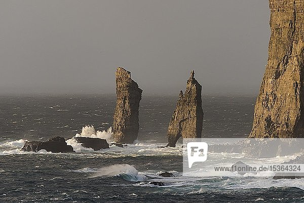 Brandungspfeiler Risin og Kellingin im Abendlicht  Risin und Kellingin  Steilküste von Eysturoy  Nordküste Färöer-Inseln  Føroyar  Dänemark  Europa