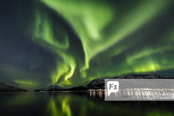 Polarlicht über dem Skulsfjord  Ort Skulsfjord  Tromsö  Norwegen  Europa
