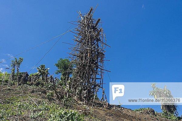 Bambus-Turm für Land-Tauchen  Pfingsten  Vanuatu  Ozeanien